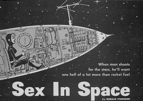 "... will come up in search engines by people seeking info on ""sex in space""."