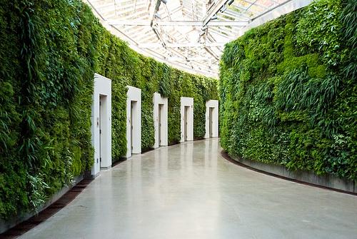 Vertical landscaping: Interior living/green walls | Matthew's ...