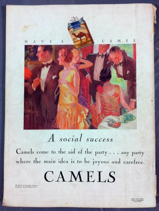 Camels… a socialsuccess