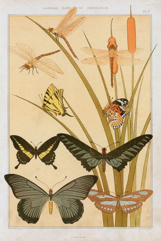 L'animal dans la decoration:Papillons