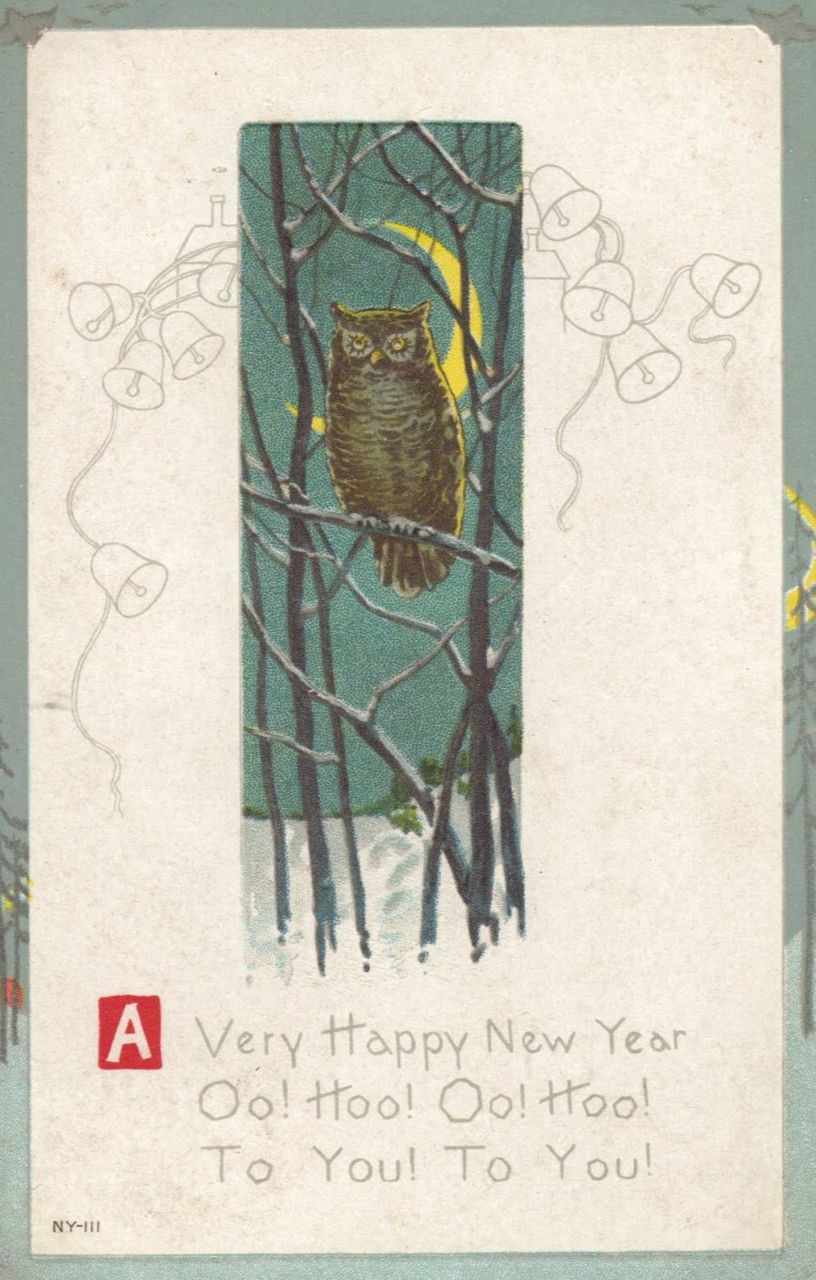 Owl New Year