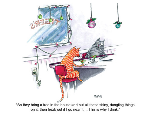 Why cats drink over theholidays