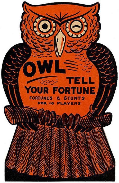 owl fortune