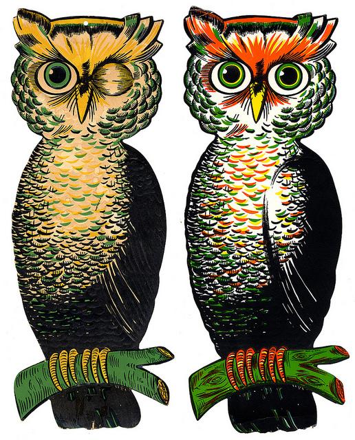 owl223