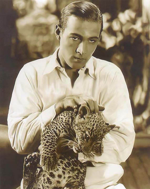 Rudy Valentino and a big kitty