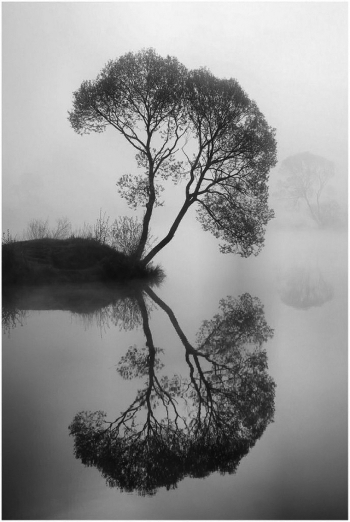 Water Reflection Photography Black And White 14 | April | 20...