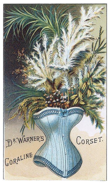corset 234