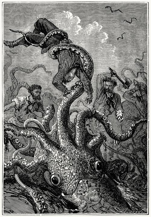kraken501