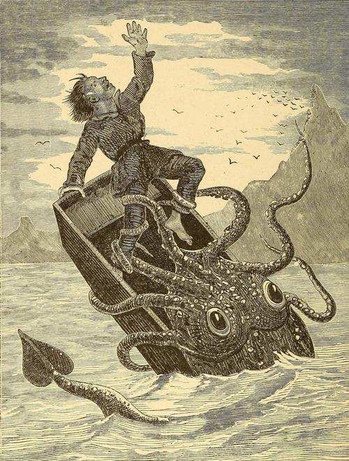 kraken503