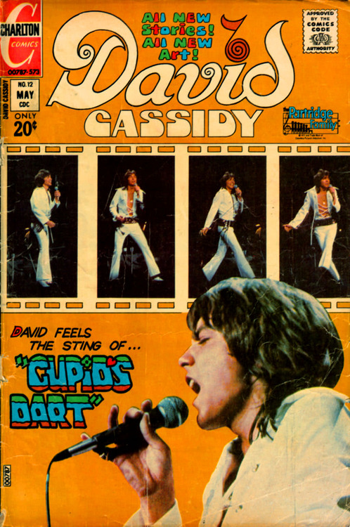 David Cassidy ComicBook