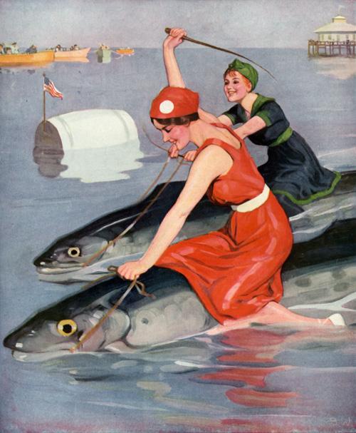 Fish Racing