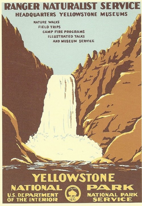 national park yellowstone 501
