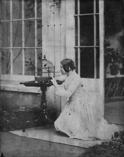 Woman opening up the door to a bird cage,1850s