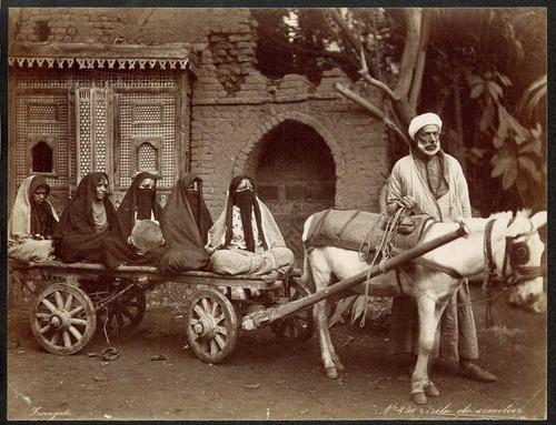 Arab widows