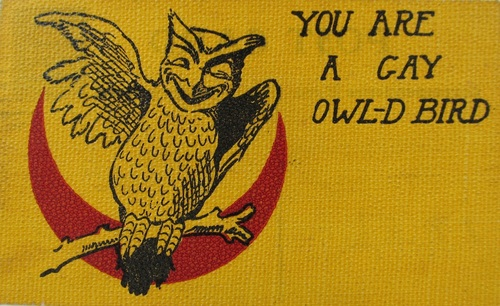 You are a gay owl-d bird