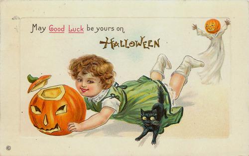 black cat halloween8977