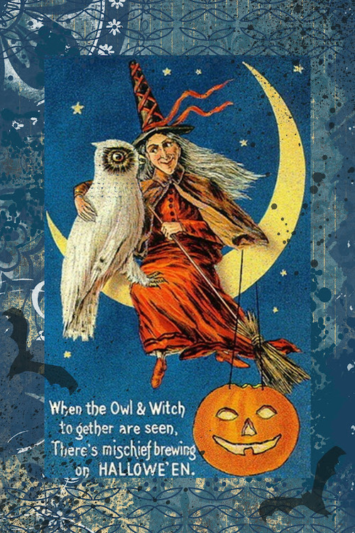 witch halloween 2524