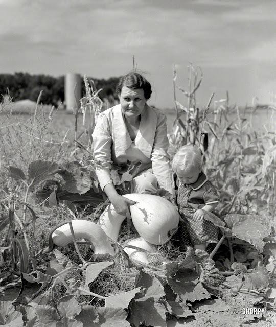 Harvest, 1940s