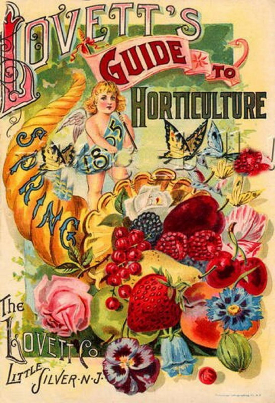 Lovett's Guide to Horticulture, Spring 1895