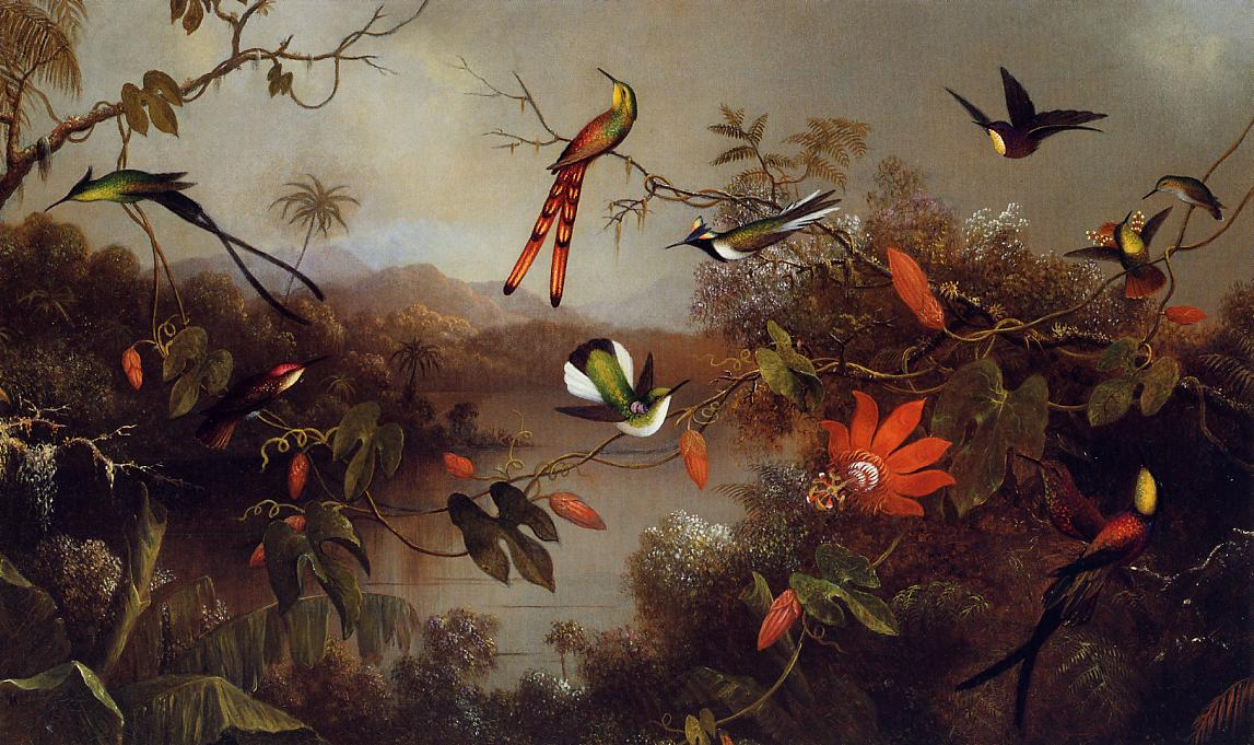 Tropical Landscape with 10 Types of Hummingbirds, by Martin JohnsonHeade