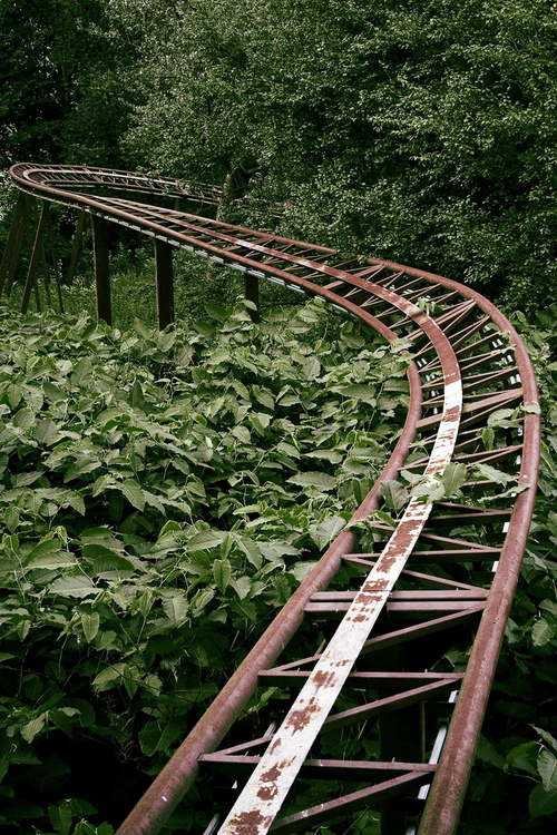 ROLLER COASTER DECAY