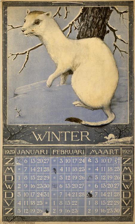 Winter Mink