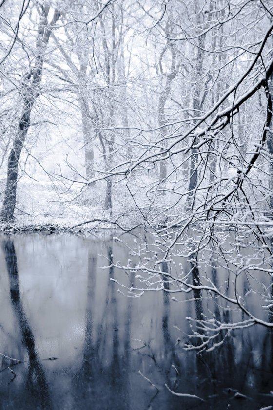winter5 1432