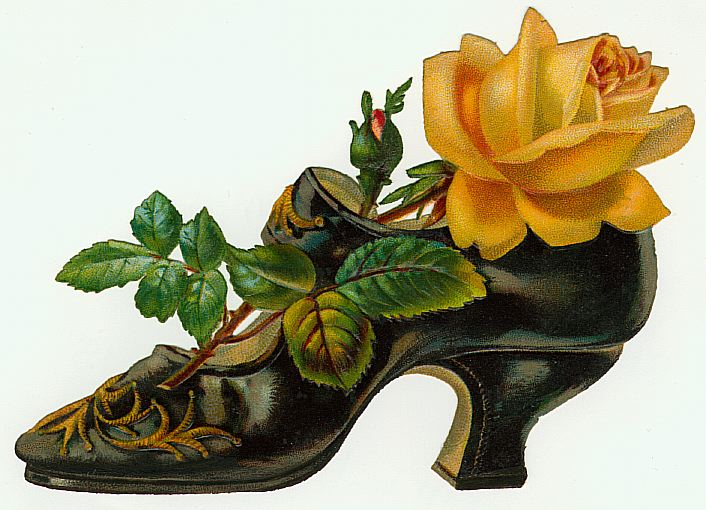 Shoe and Rose