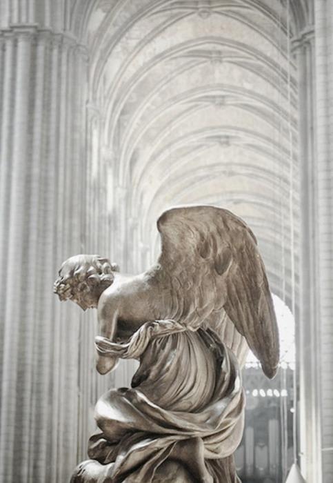 angel 3232