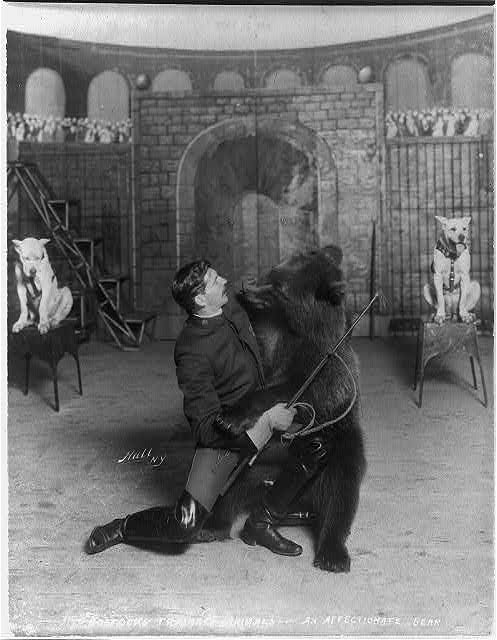 Mustachioed man with abear