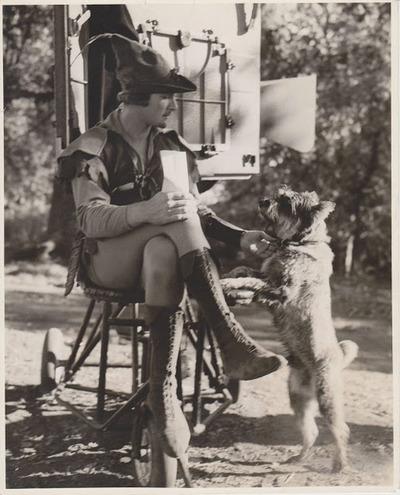 """Errol Flynn taking a break from filming """"Robin Hood"""", with aterrier"""