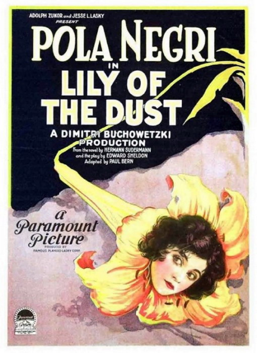Lily of theDust