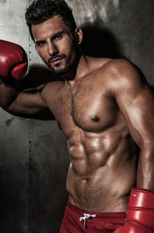 boxer 231281