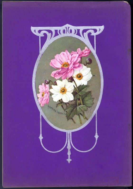 flower seed catalog 17612