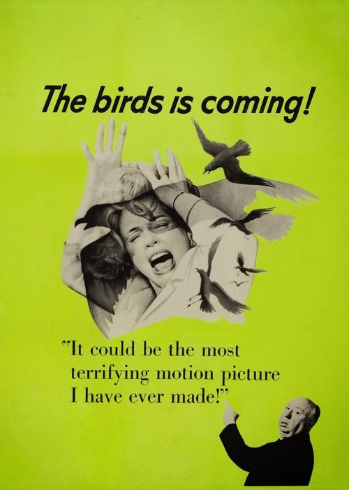 the birds 500