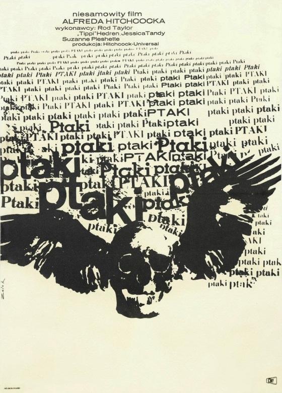 the birds 504