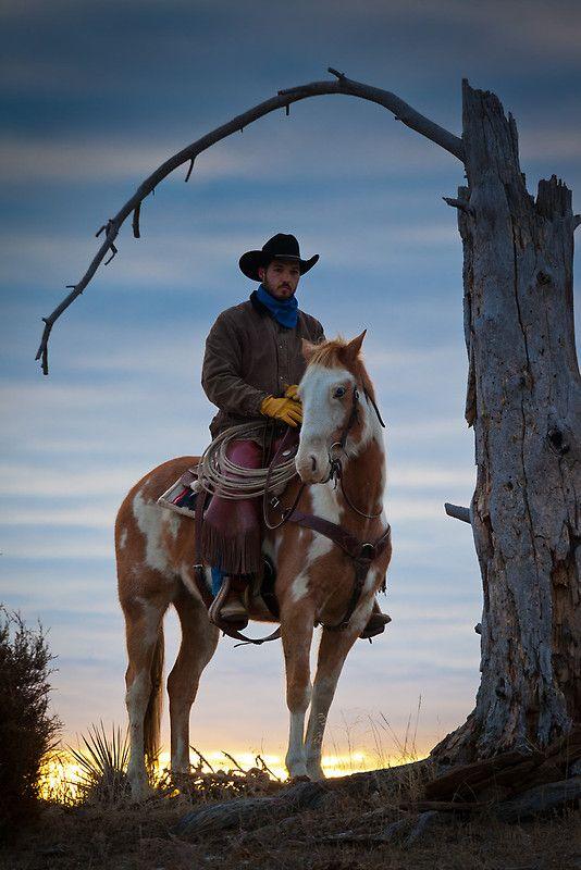 cowboy 8401