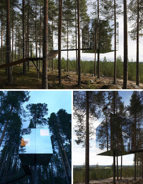 tree house000