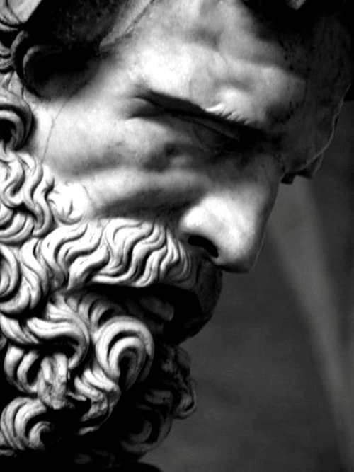 beard 12313