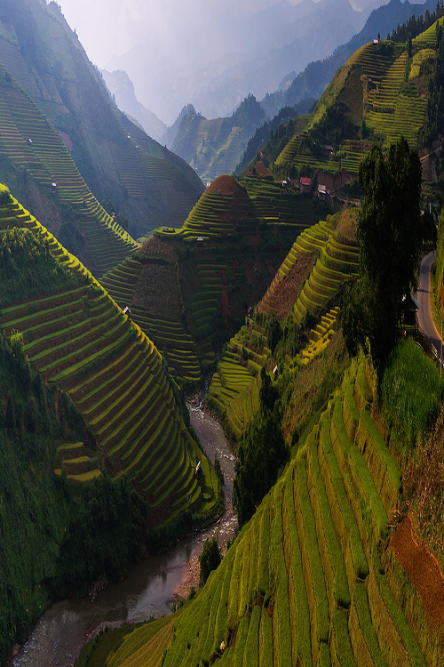 Terraced river valley in Bhutan (Himalayas)