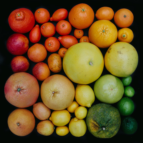 Fruit arranged by colour, photo by Emily Bilonce