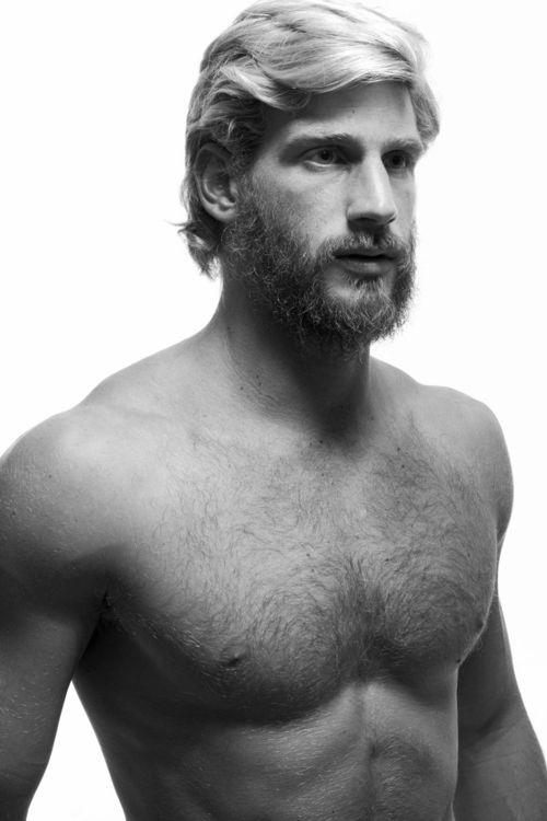 beard 243