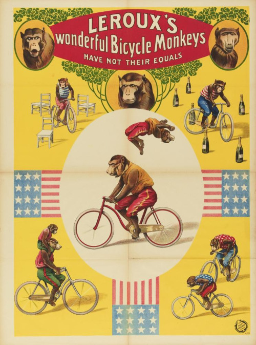 Leroux's Bicycle Monkeys