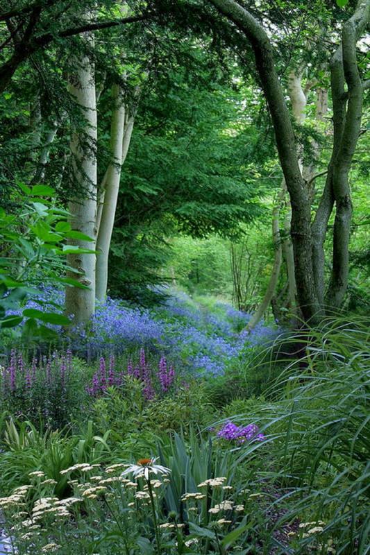Perennial plantings in a naturallandscape