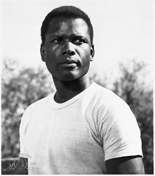 SIDNEY POITIER 1963