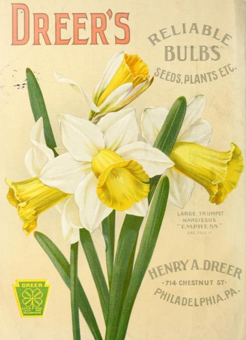 vintage seed catalogs 501