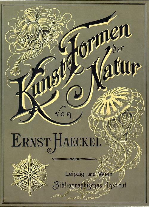 Kunst-Formen der Natur, von ErnstHaeckel