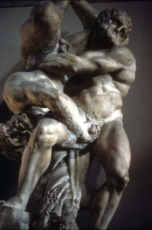 statue combat 501