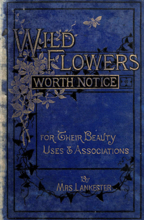 Wild Flowers Worth Notice For Their Beauty, Uses, and Associations – by Mrs. Lankester