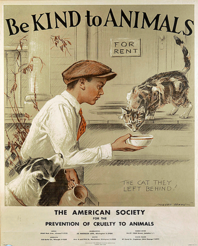 be kind to animals000